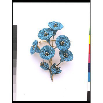 England, c.1835-1850   Brooch with turquoises and pearls with convolvulus flowers   V&A Museum