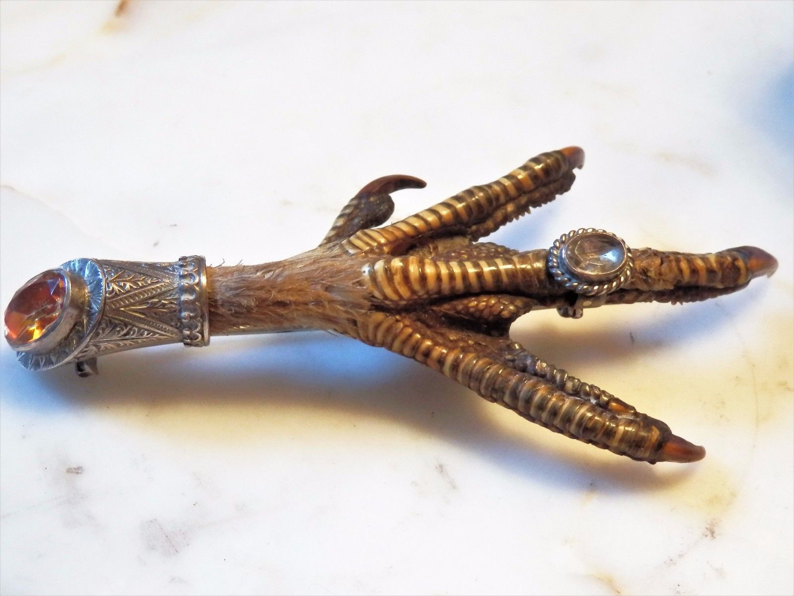 In Victorian times, actual bird's claws were sometimes turned into brooches. (One of these will never be sold by Elder and Bloom!)