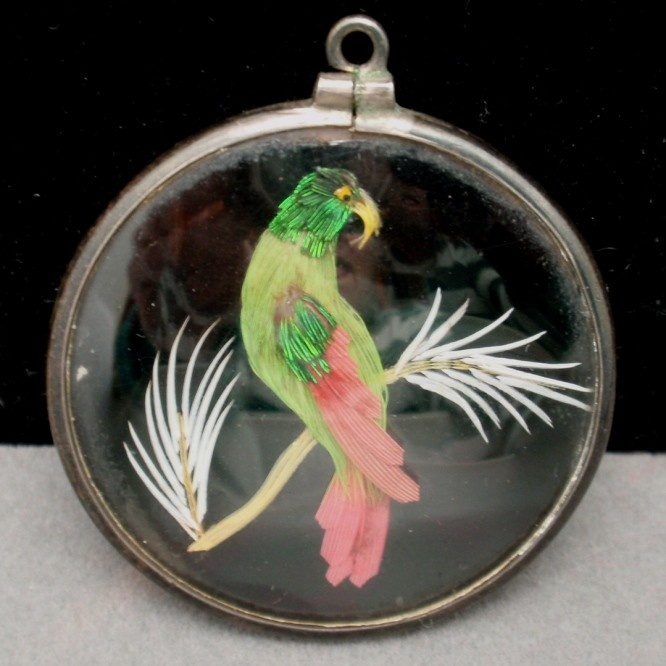 Victorian parrot pendant with real feathers.