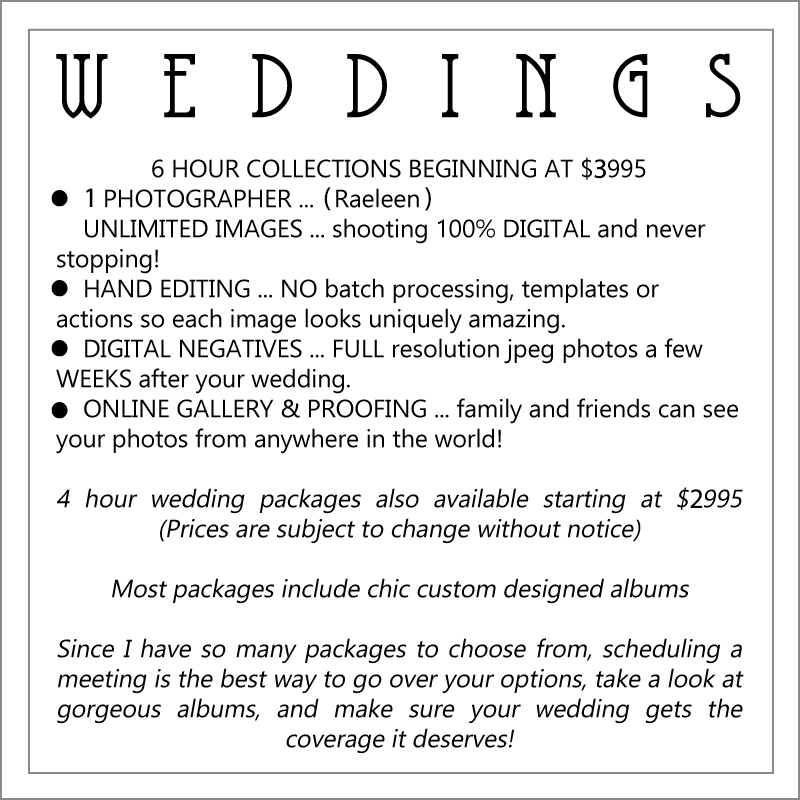 Website wedding pricing.jpg
