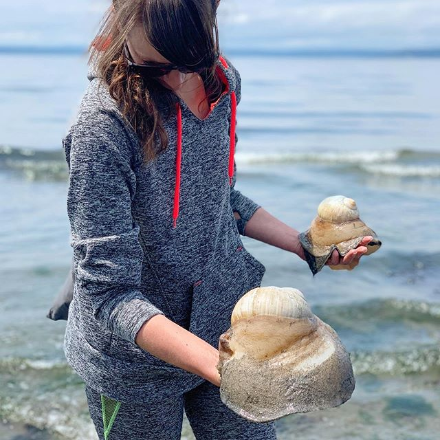 Low tide, barefoot and holding giant moon snails... I can't think of a better morning.