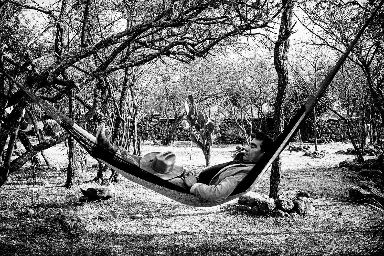 hammock-1web.jpg
