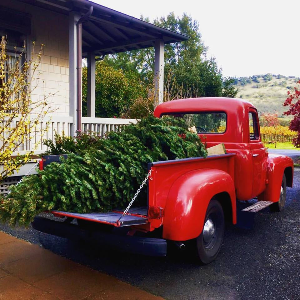 Red Truck + Tree