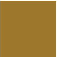 SOCIALS seal_final gold_SEPT 8, 2019-01-small.png