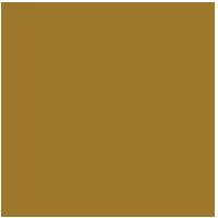 SOCIALS seal_final gold_NOV 17, 2019-01-small.png