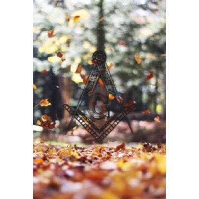 falling_leaves_SC.jpg