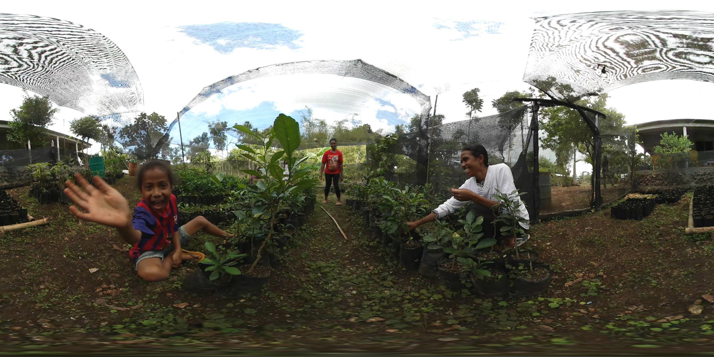 Sustainable garden in Timor-Leste by Ben Kreimer.