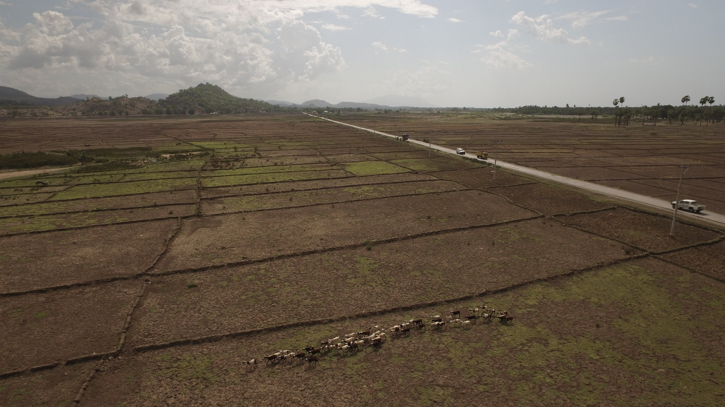 Drone footage from Timor-Leste farmlands by Ben Kreimer