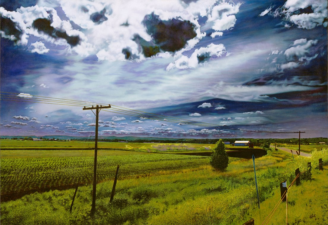 Mary's Fields , 2010, Acrylic on Canvas, 26 x 40 inches  (inquire)