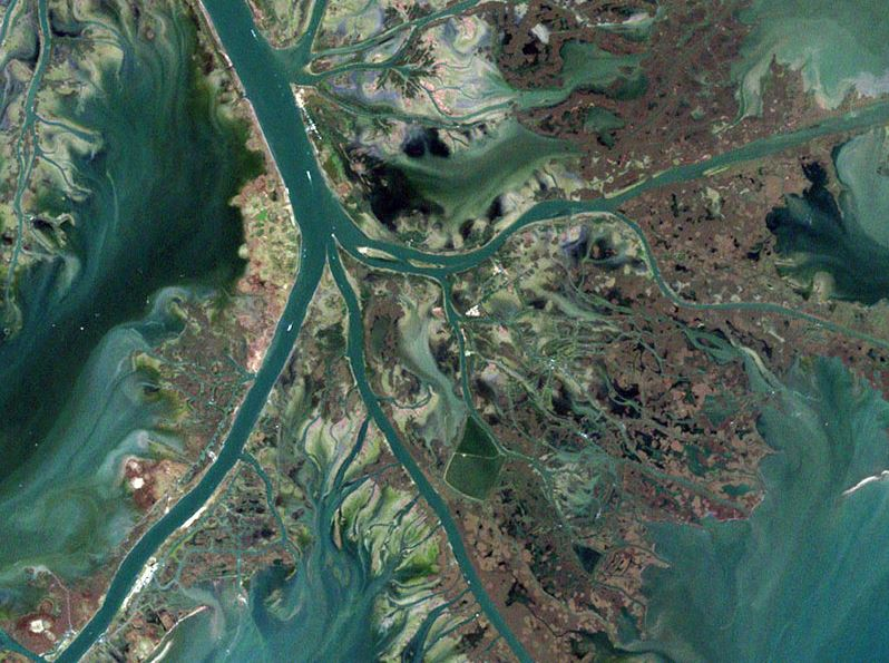 An aerial photograph shows hypoxic areas blooming as nutrient-laden water from the Mississippi enters the Gulf.