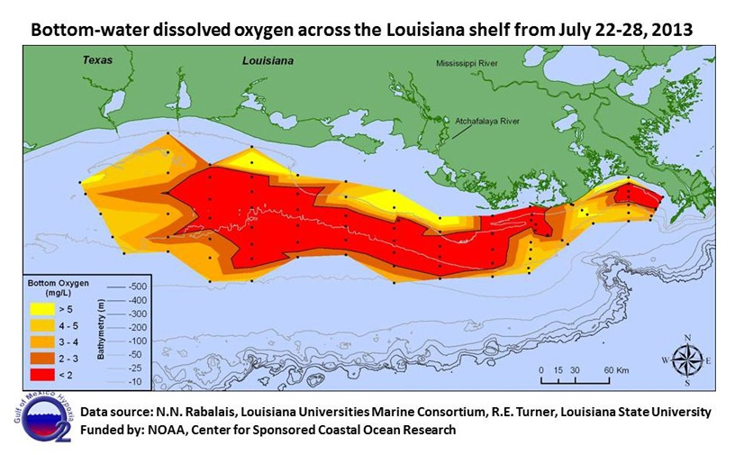This map shows the extent of the 2013 dead zone in the Gulf of Mexico, with red indicating the areas of lowest dissolved oxygen. Map by LUMCON (Rabalais).