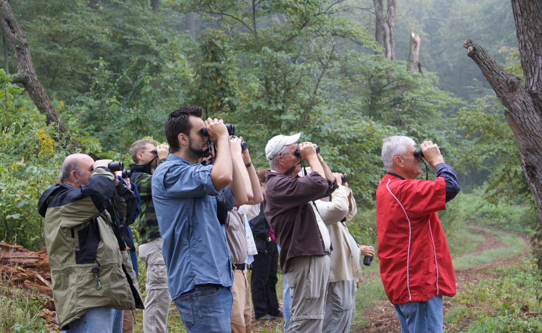 Birdwatching at the Dixon Waterfowl Refuge.