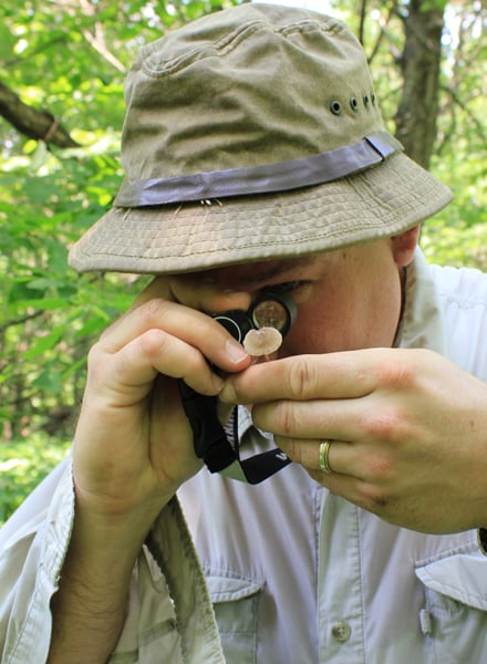 A mycologist uses a hand lens to identify a fungus. Photo by Beth Botts.