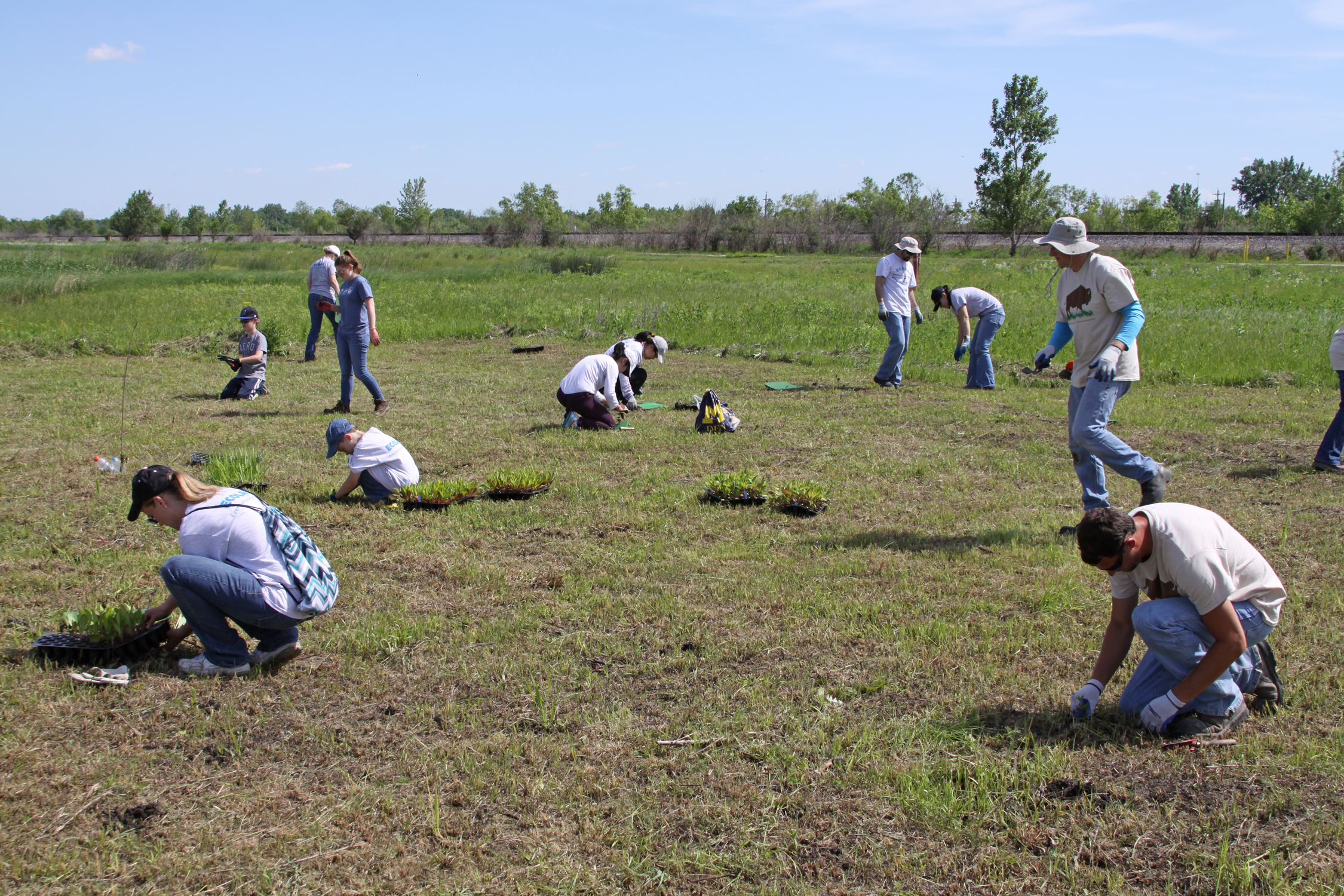 In all, 45 employees from four companies volunteered to help plant native seedlings at TWI's Lobelia Meadows project site during the annual Corporate Volunteer Day held immediately after the recognition event.