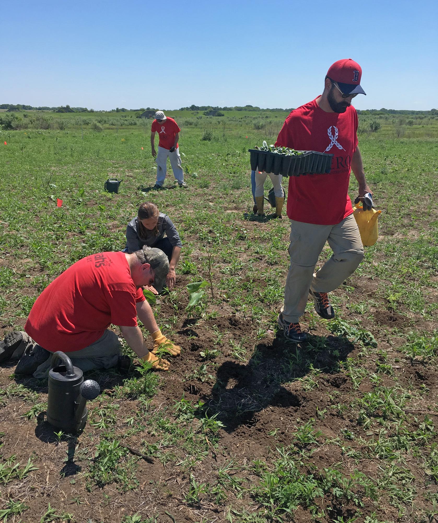 Harrah's Joliet volunteers work together to install native plugs.