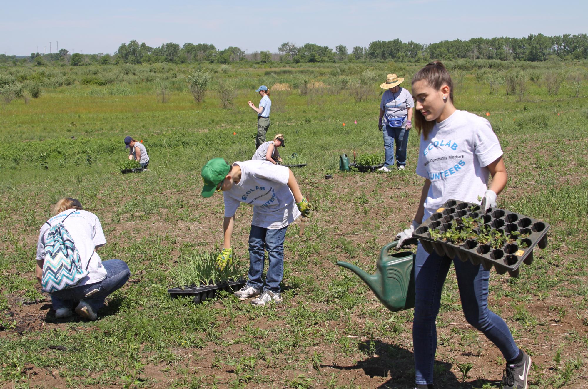 Teamwork gets the prairie restoration job done.