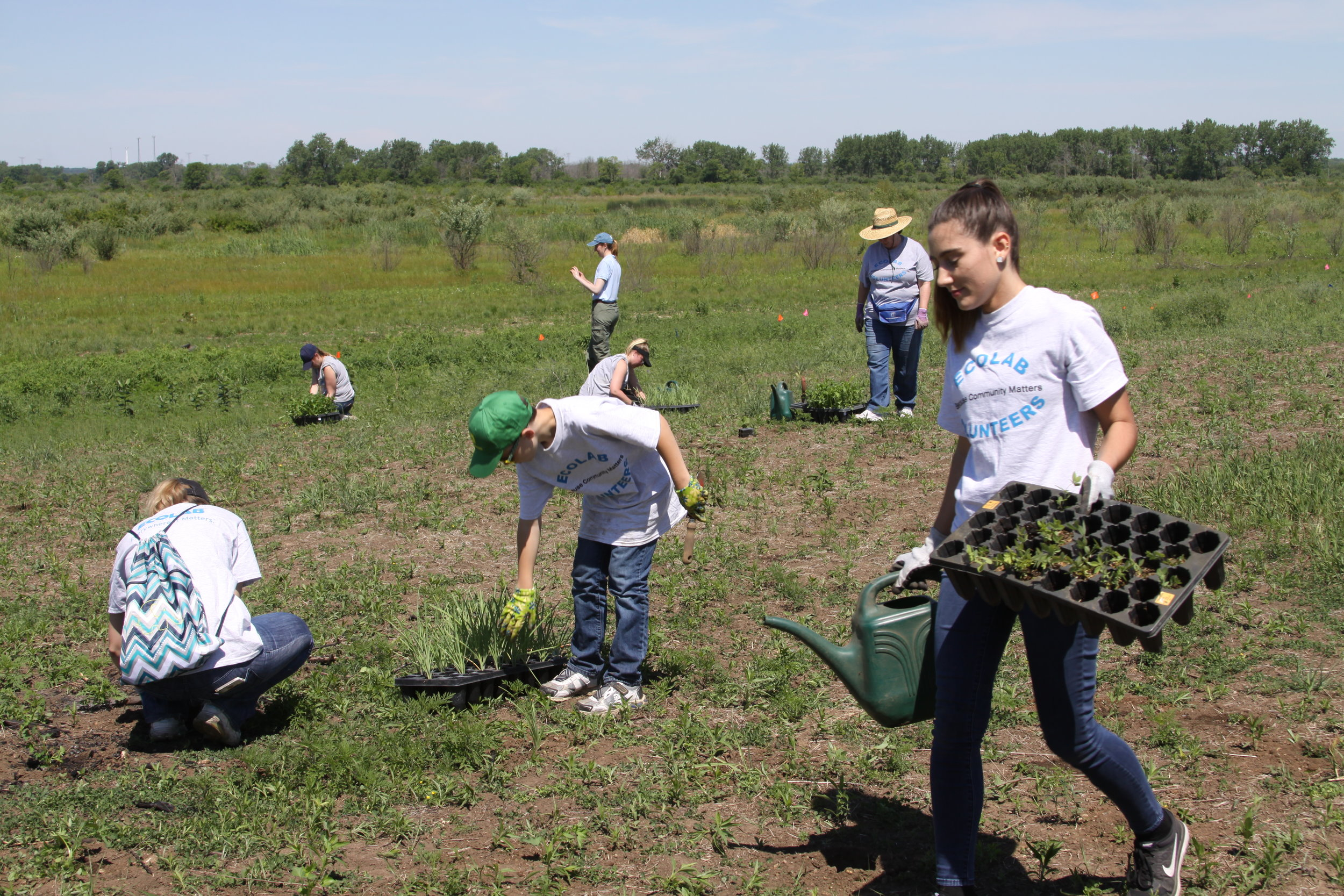 Ecolab employees and their families planting plugs at Midewin's Secret Ridge area. Photo by Vera Leopold/TWI.