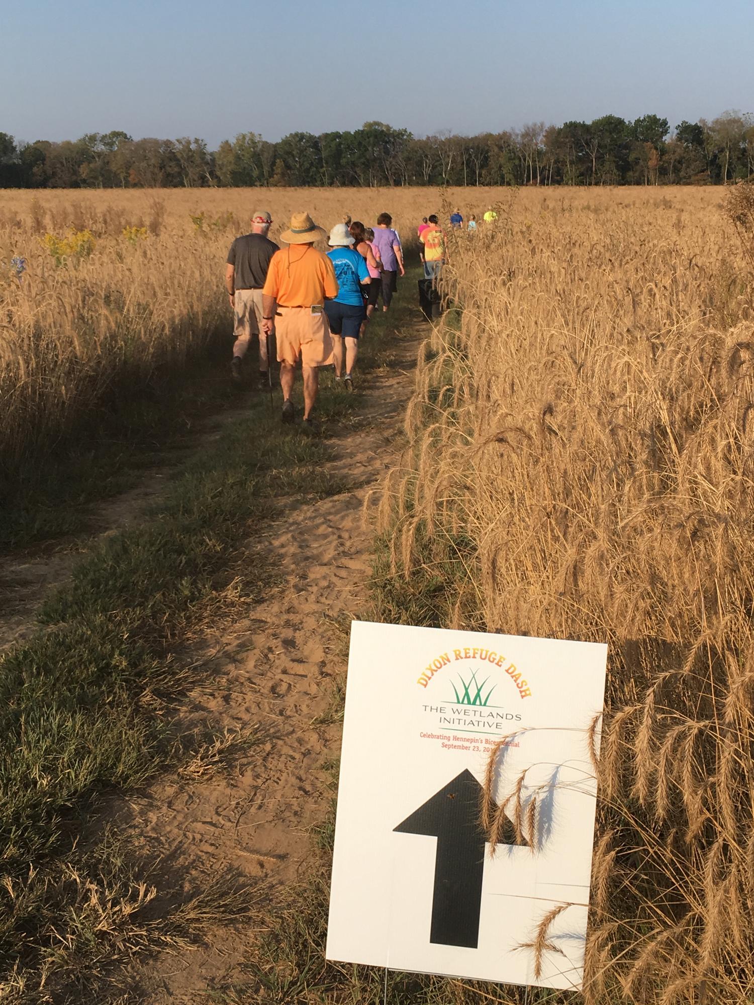4 - Walkers in prairie.jpg