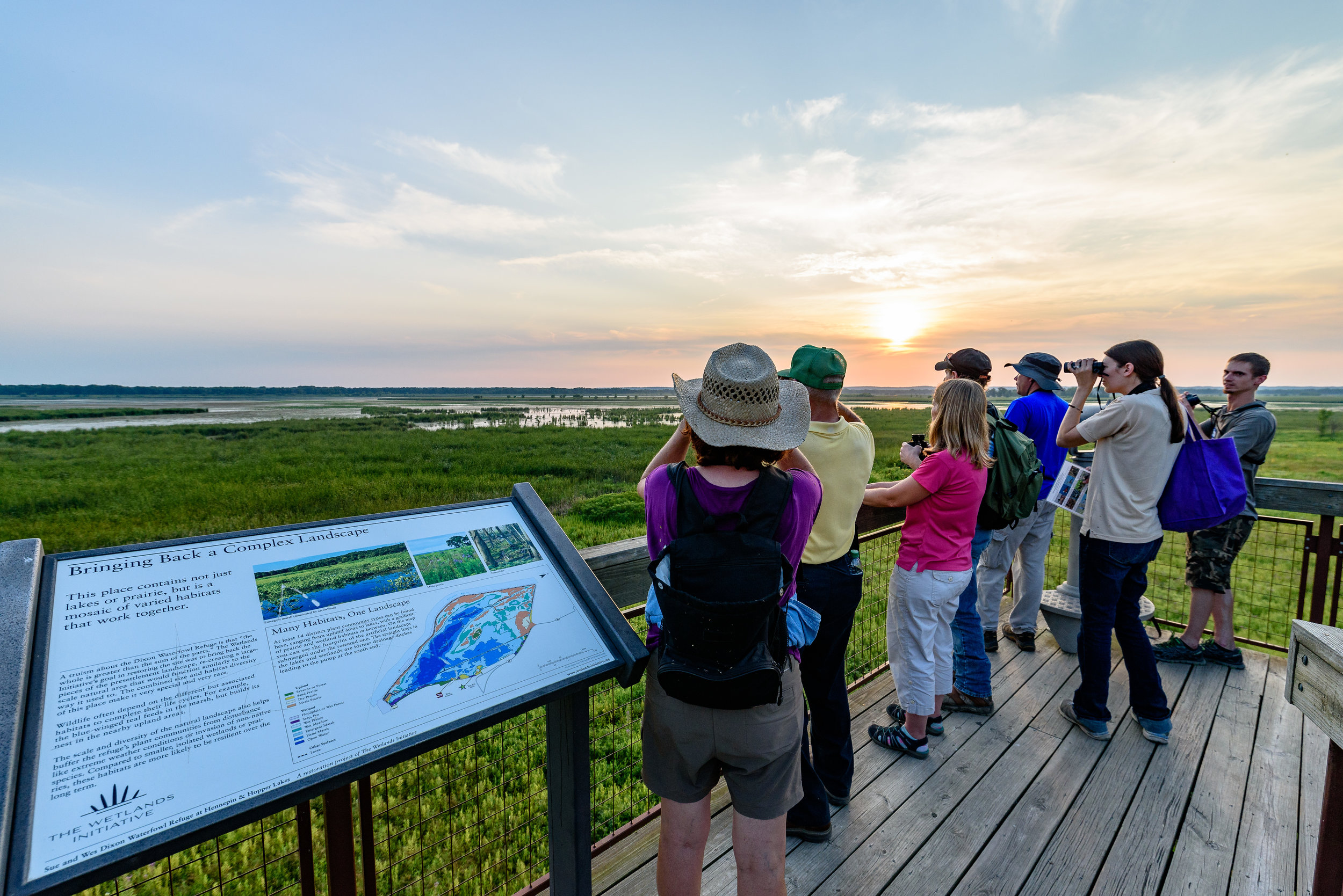 A walk to look for secretive marsh birds from the observation tower and along the boardwalk was one of two Friday dusk surveys. Photo by Rafi Wilkinson.