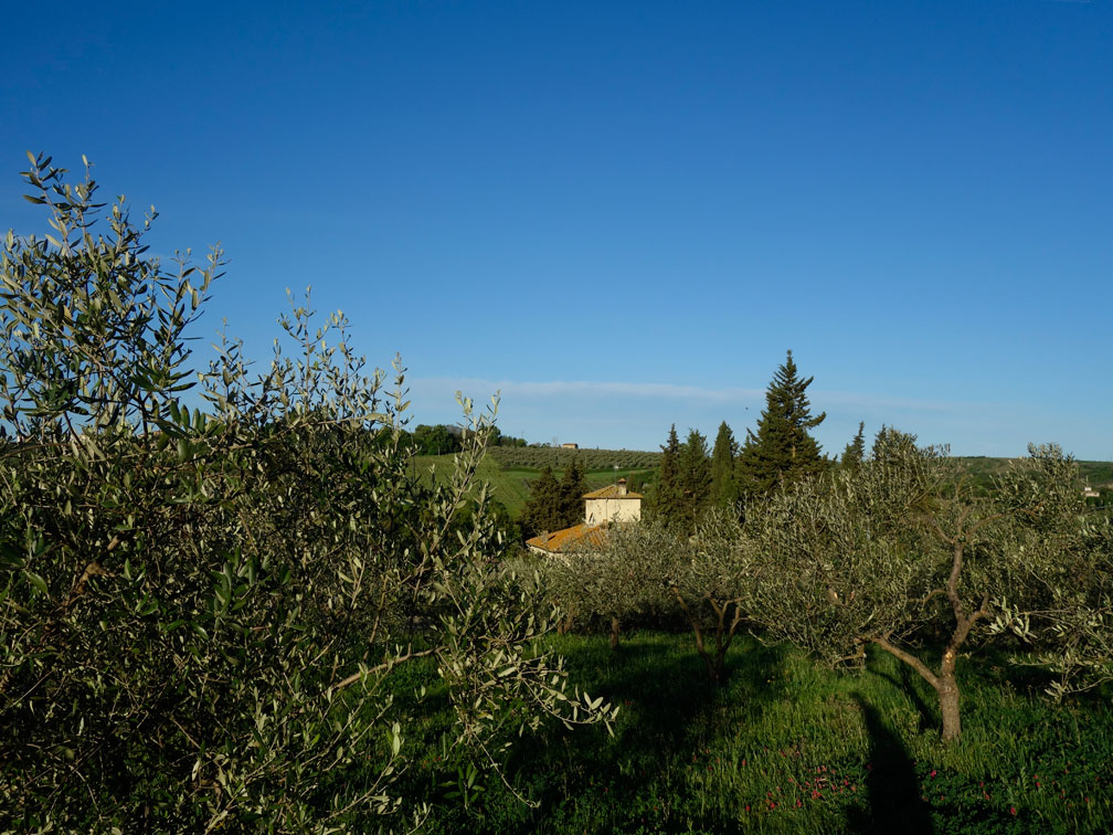 The view hilltop to our villa. No other description necessary.