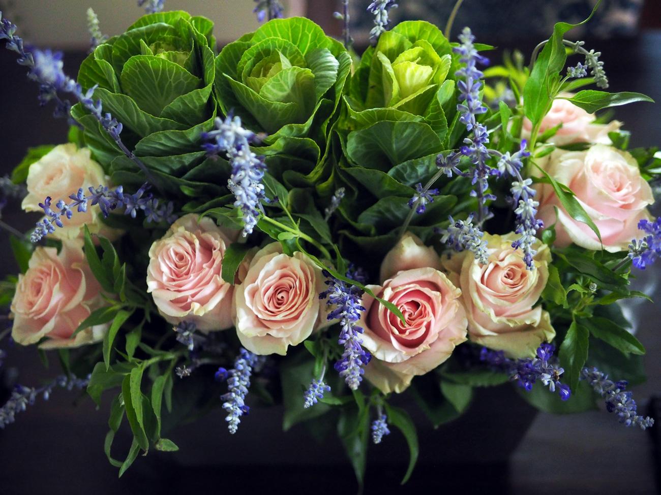 roses.overhead.jpg
