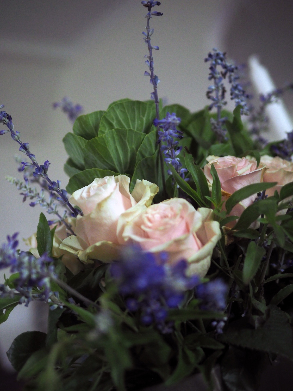 roses.cu3.jpg