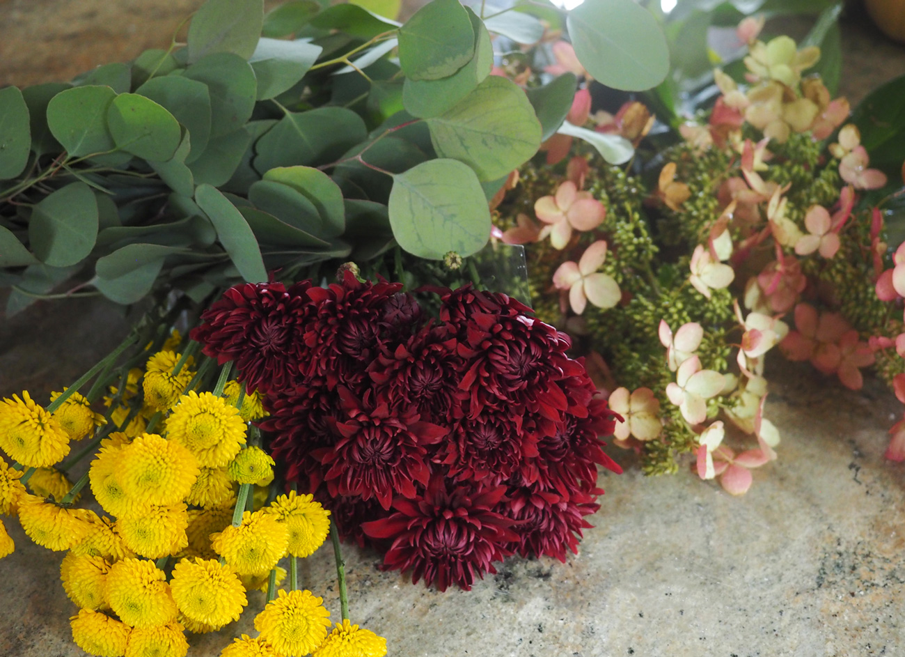 Burst of yellow pom pom mums, crimson mums, eucalyptus leaves and hydrangea are the stars.