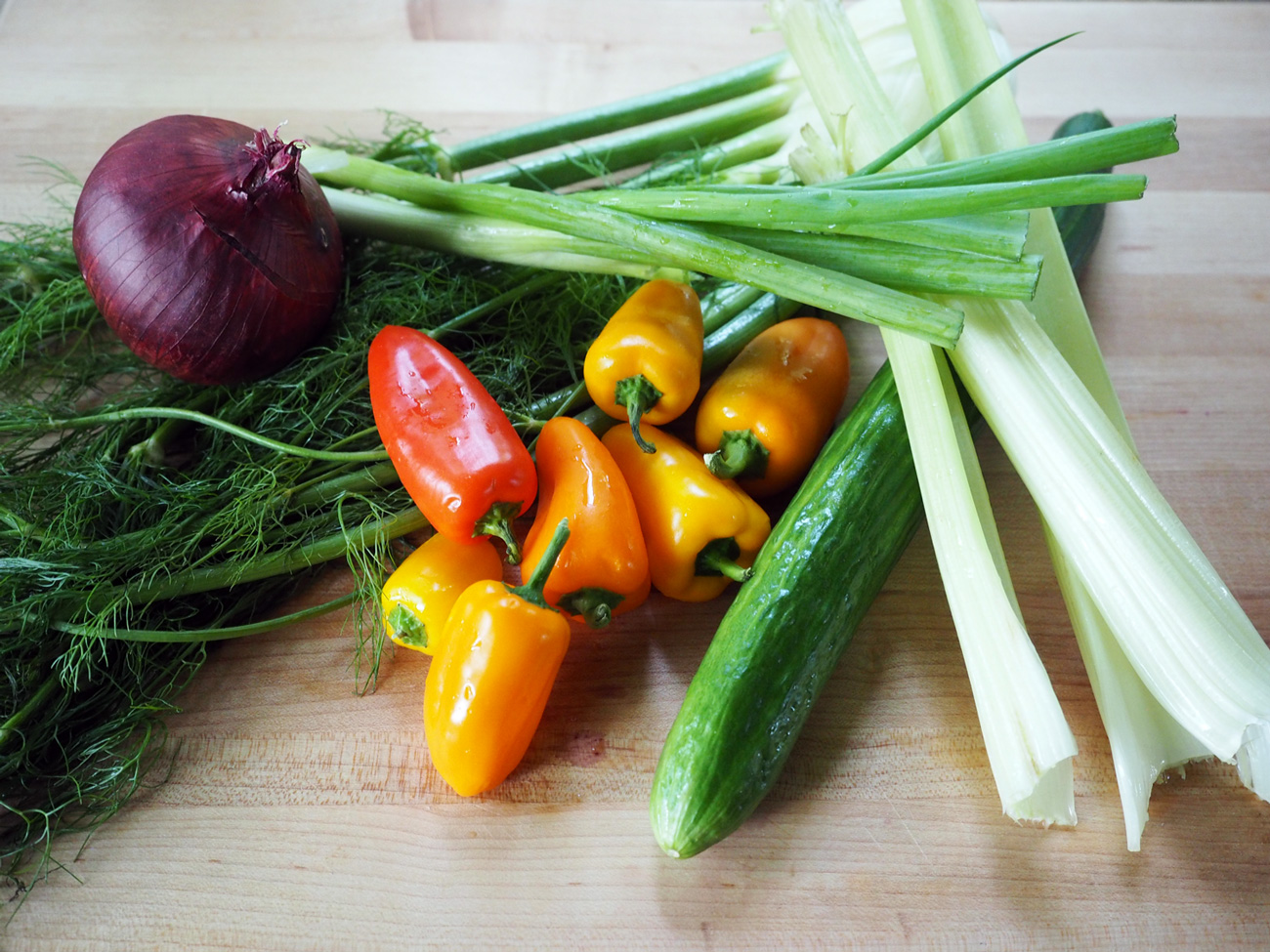 The line up: Fennel, red onion, scallions, mini bell  peppers, English cucumber, celery.