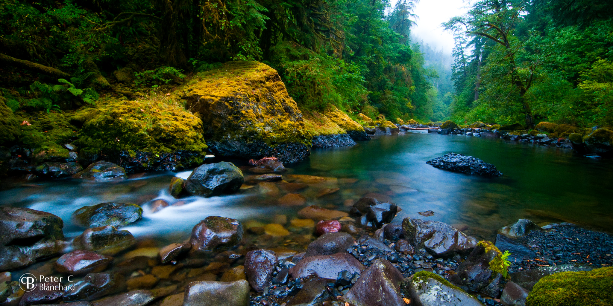 Eagle Creek, in the Columbia River Gorge. This is where the fire started when two young men threw fireworks over a cliff.