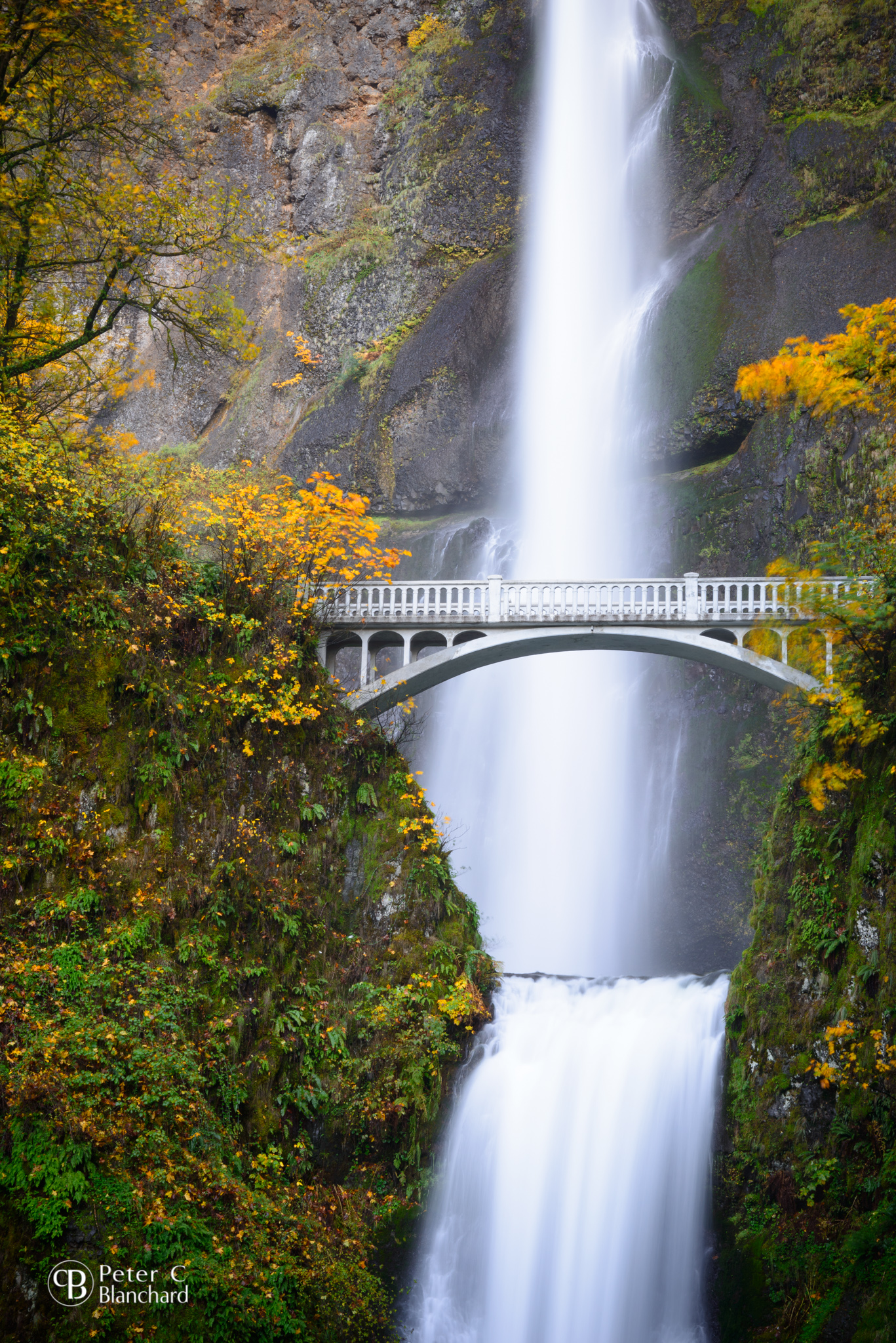 Multnomah Falls. The lodge has been spared, so far. It's unclear how the rest of the area is faring.