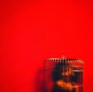 """Eryn Allen Kane, """"Aviary: Act II"""" x Nylon Premiere"""