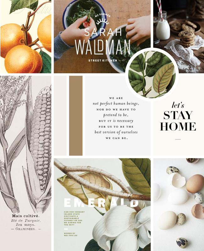 Vintage Modern Cookbook Moodboard | Spruce Rd. #design #botanical #vintage