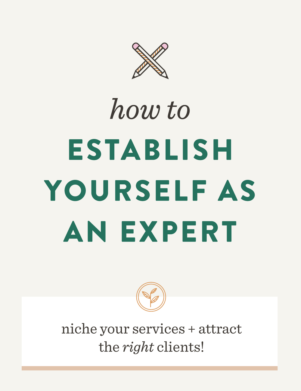 How to Establish Yourself as an Expert | Spruce Rd. #niche #freelance #branding