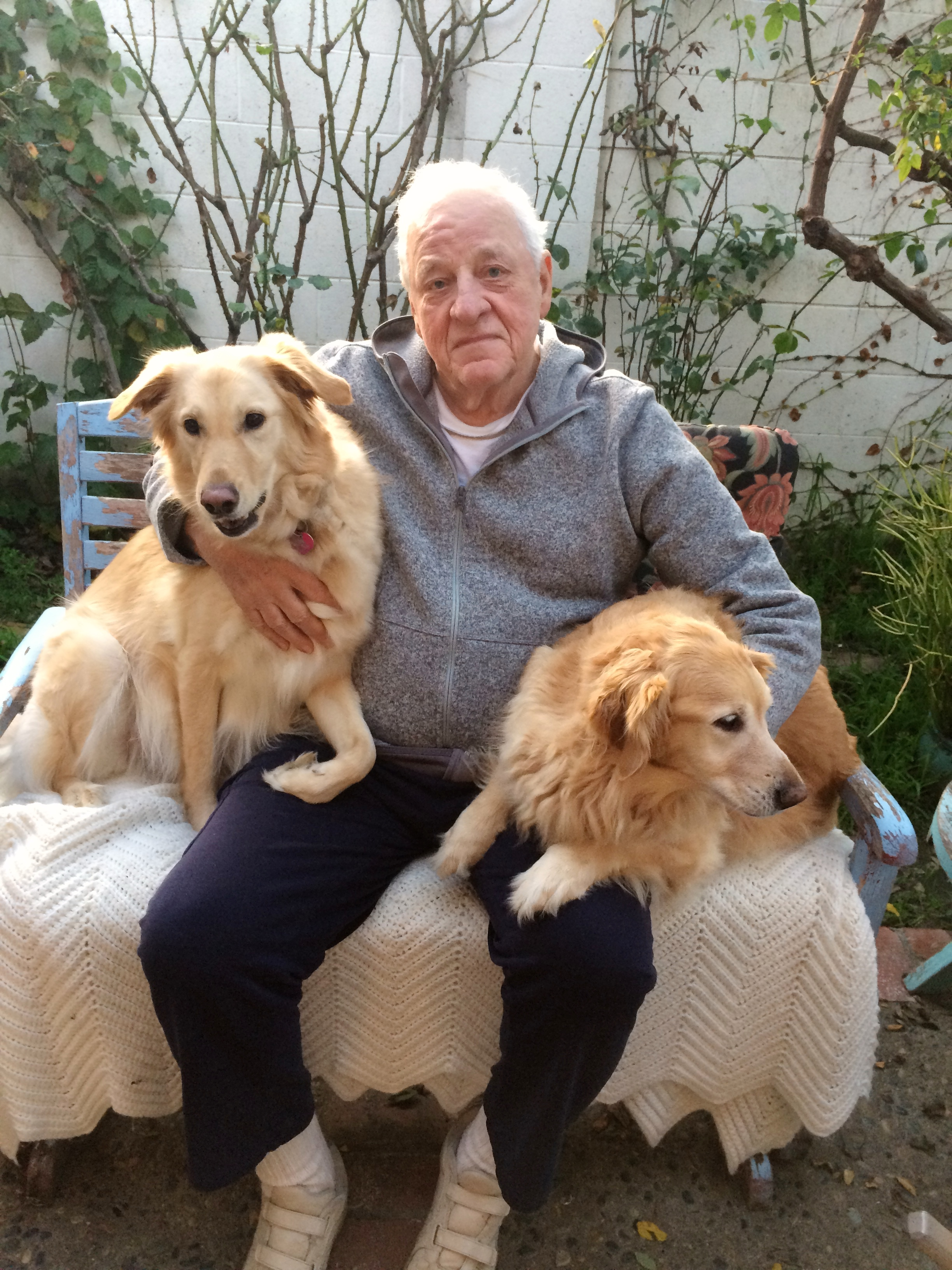 Here are three happy subscribers to Dog TV, With Heidi, left; Gypsy, right; I'm in the middle. (We are real dogs and people, not paid actors.)