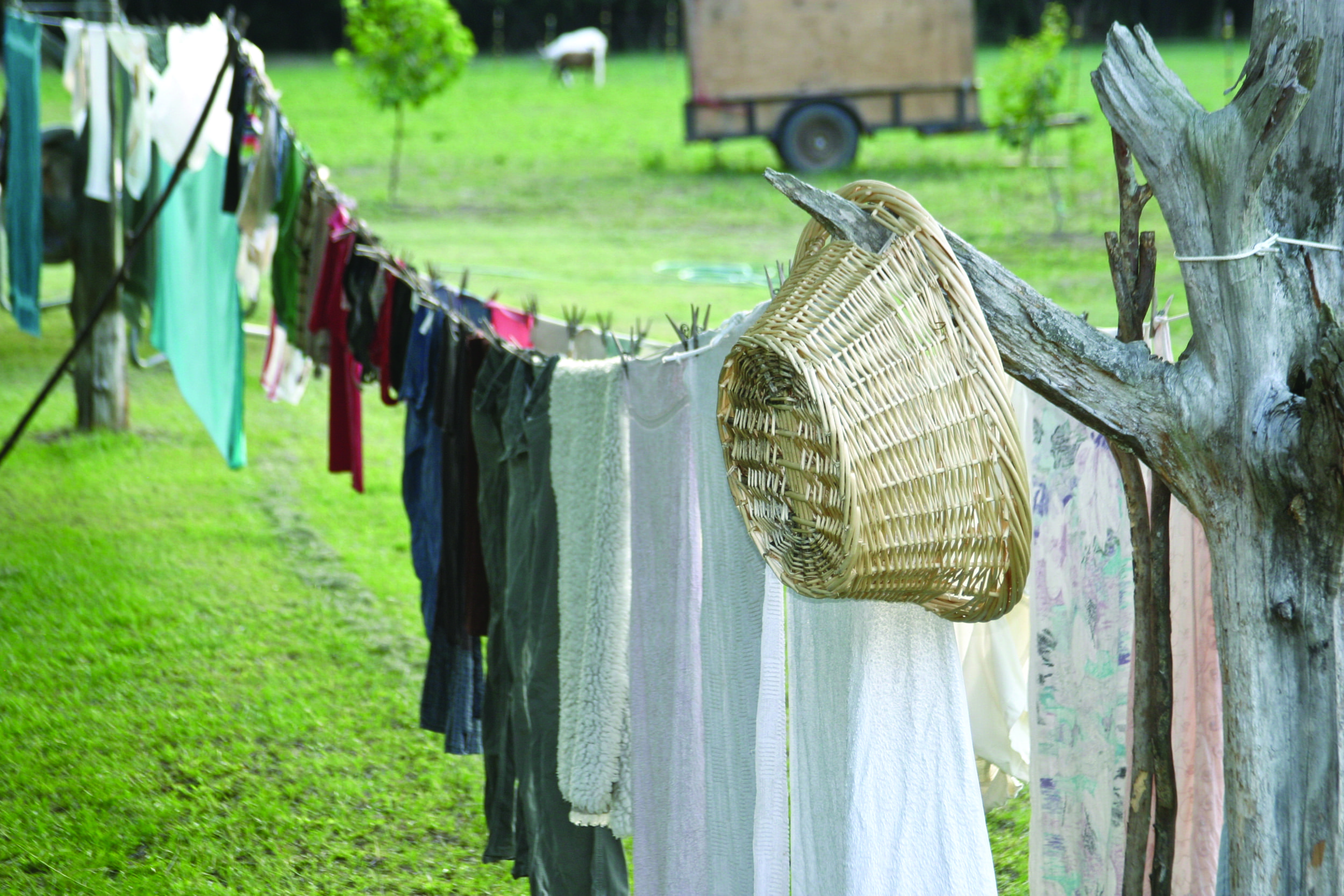 clothes line.jpg