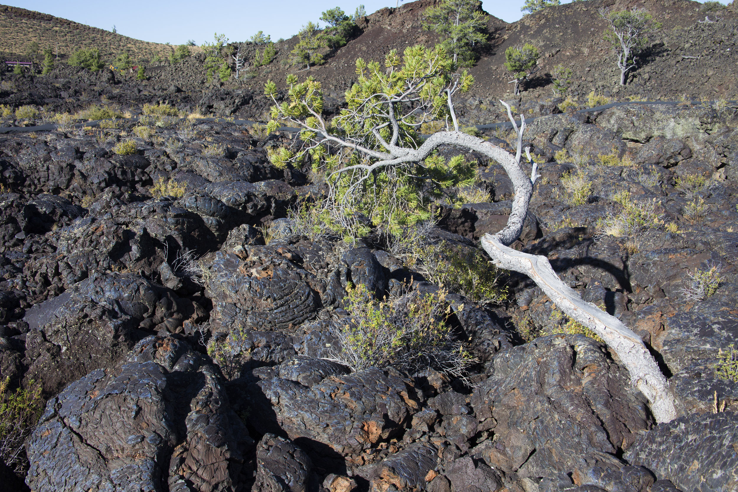 Craters of the Moon 8.jpg