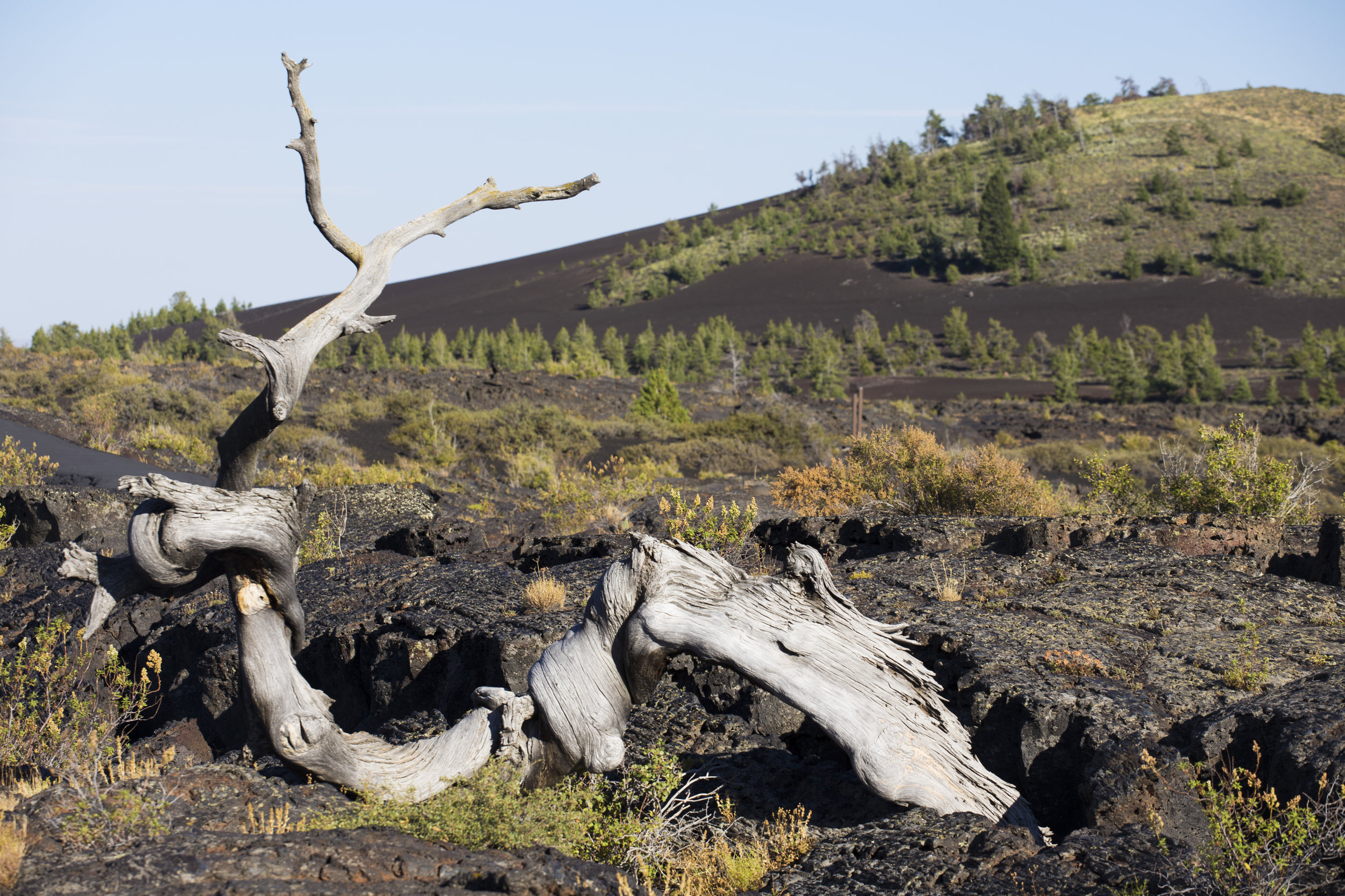 Craters of the Moon 10.jpg