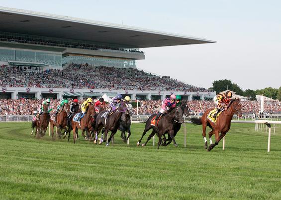 Arlington Racetrack - 6 Passes