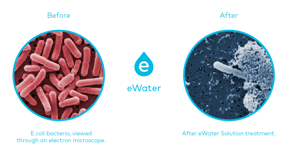 ewater_microscope_ewater.png