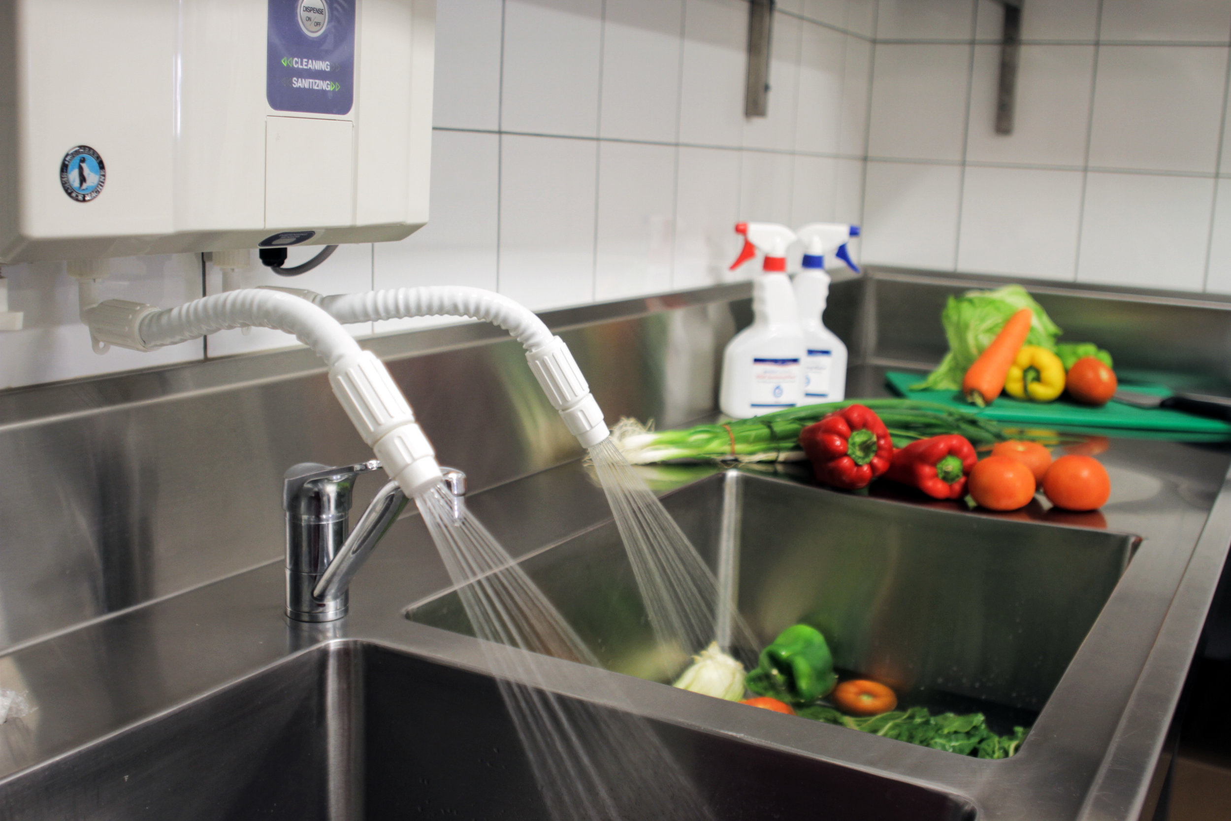 eWater Electrolysed Water System - Cleaning Food