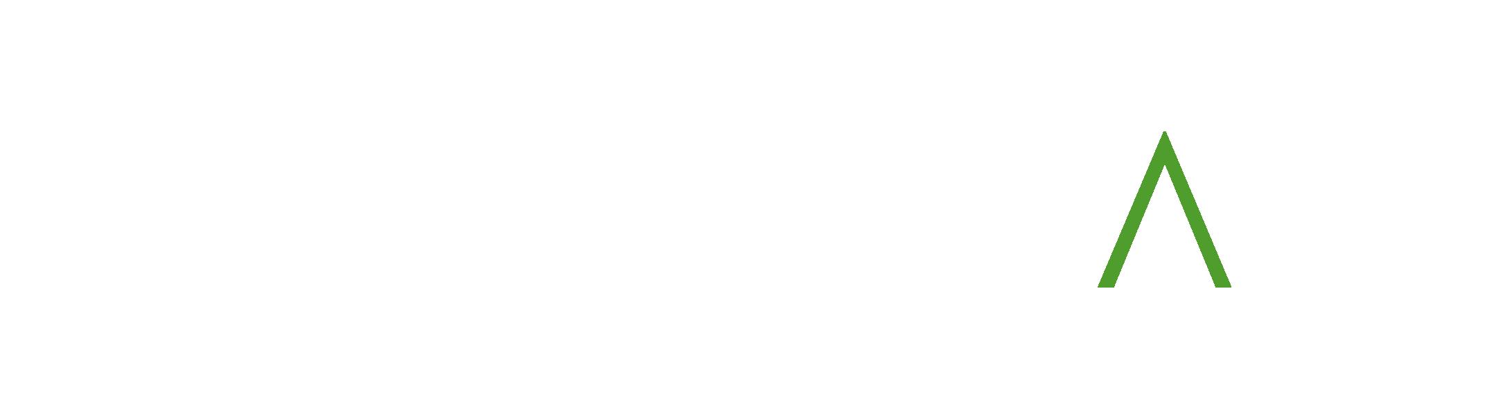 Accelitas+Logo_RGB_white_RGB.png