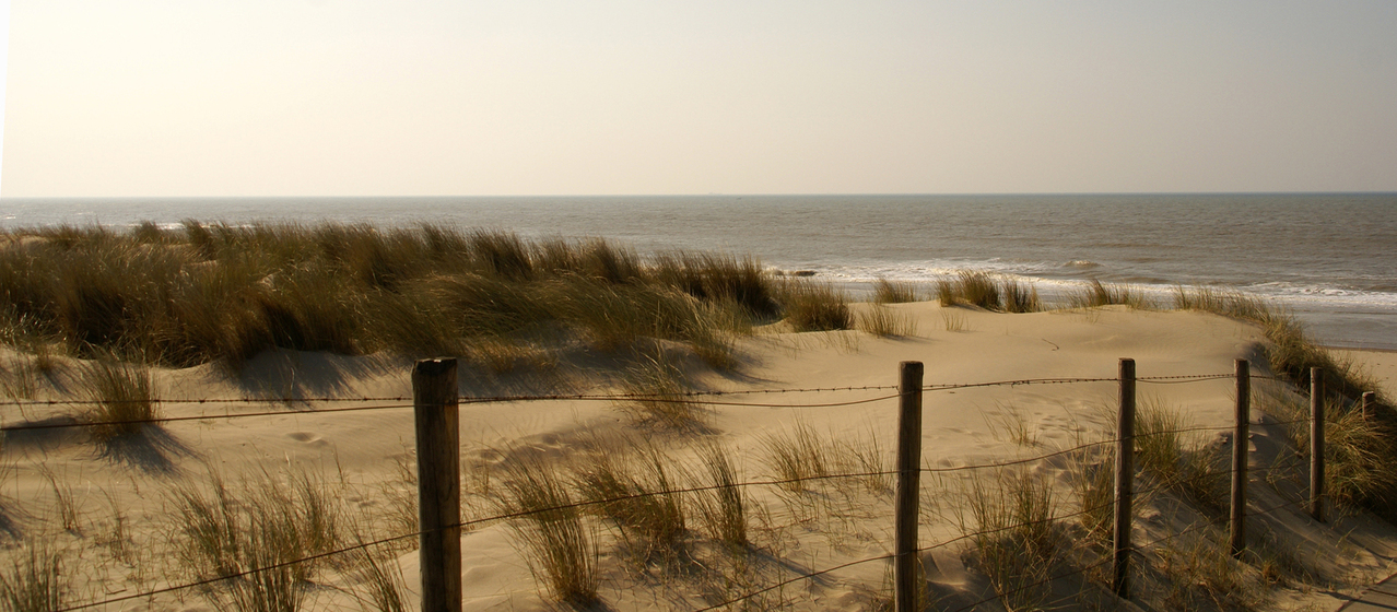dunes-1375570-1278x559.jpg