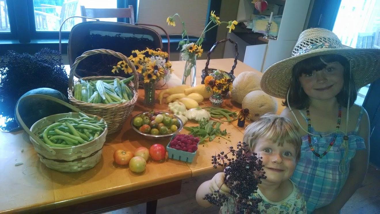 Typical Summer Garden Harvest, from August