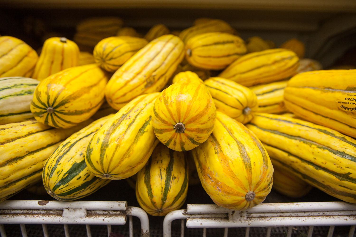 organic yellow squash from Mana Foods Produce Department