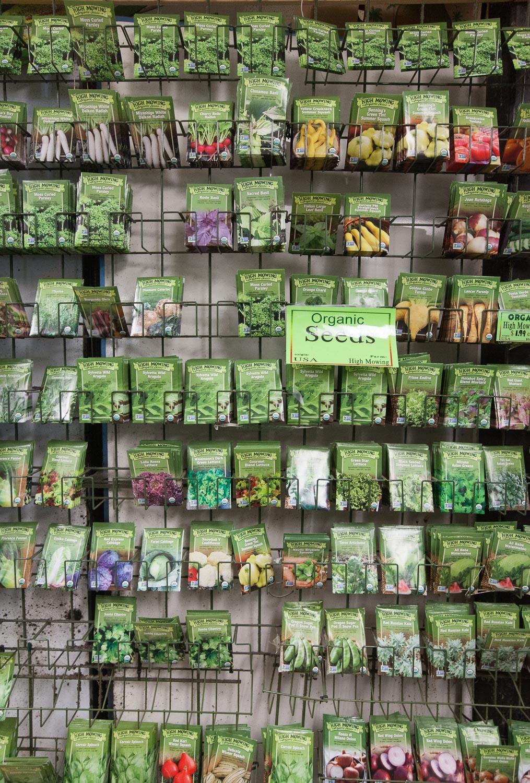 organic-seeds-mana-foods-household-deparment.jpg