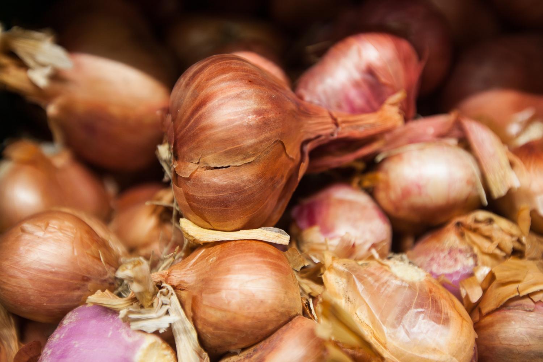 garlic-mana-foods-produce-department.jpg