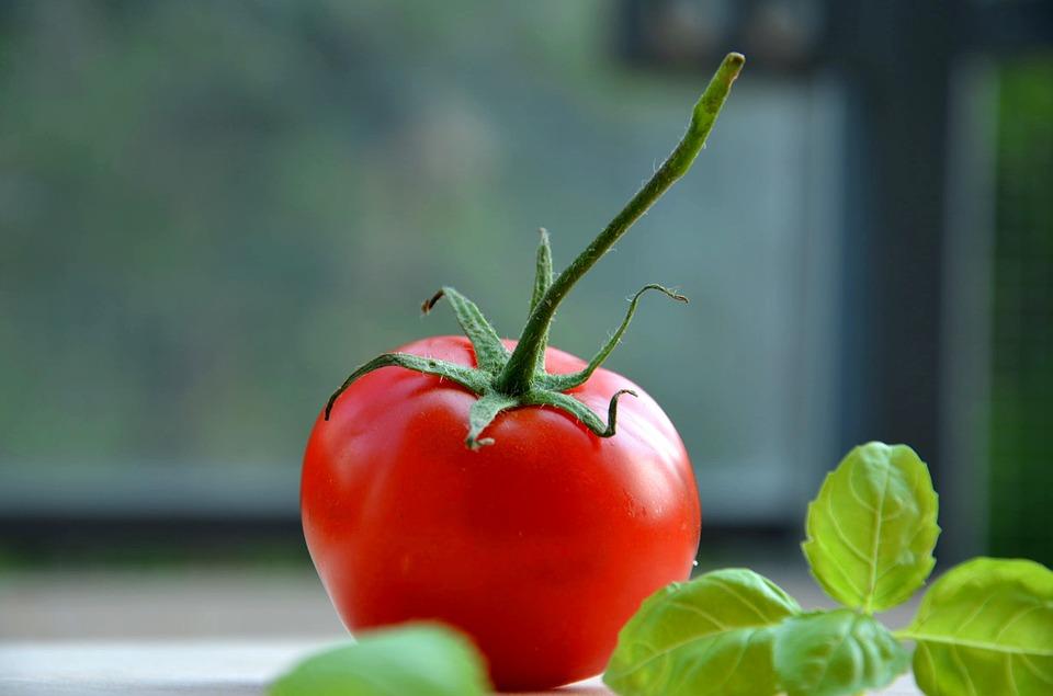tomatoe-932737_960_720.jpg