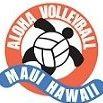 aloha volleyball association's logo