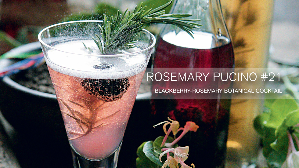 home-banner-Rosemary-Pucino-21-cocktail.jpg