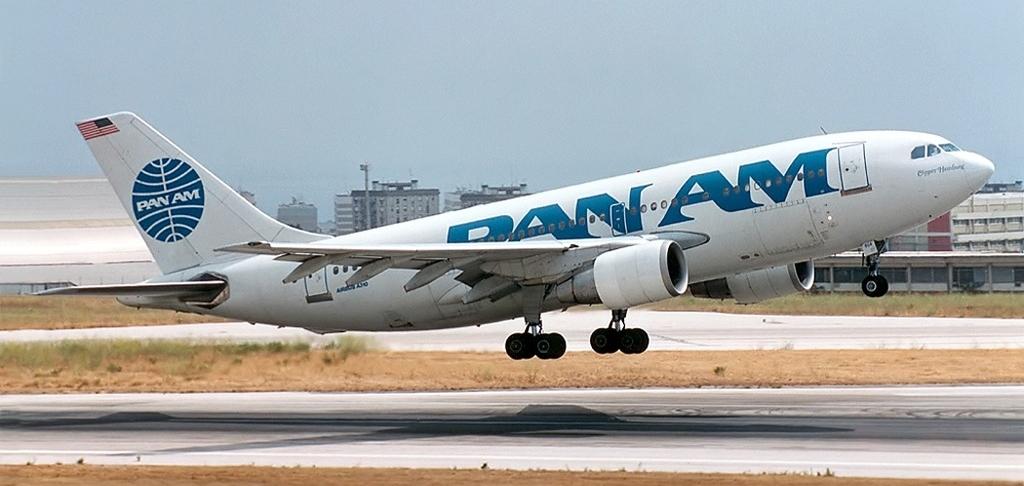 Photo by Pedro Aragão via Wikimedia Commons, CC 3.0 license